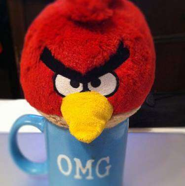 Are you an angry bird online? Are you the person alway starting arguments and heated discussions?
