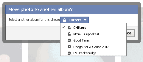 Choose the new Facebook album where you want your photo to be located