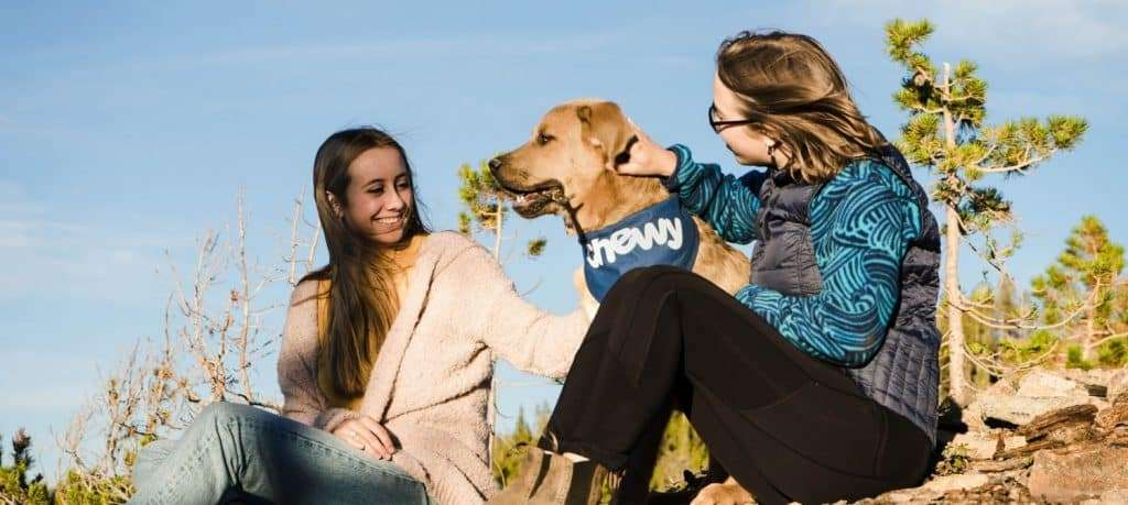 Authenticity is key when working to grow an Instagram audience for your pet